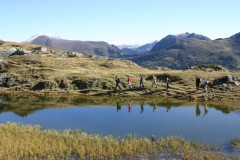 Alpe-Adria-Trail Paket Erlebnis: Nationalpark Nockberge (Gruppenprogramm)