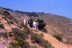 Andalusien - Costa de Almeria (Gruppenprogramm)