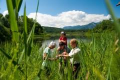 Südkärnten - Bad Eisenkappel (Gruppenprogramm)
