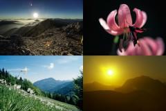 Foto-Kurs am Klopeiner See (Gruppenprogramm)