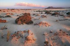 Fuerteventura (Gruppenprogramm)