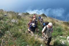 Ischia (Gruppenprogramm)