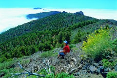 La Palma - West (Gruppenprogramm)