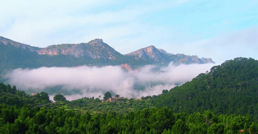 Mallorca - Tramuntana-Ost (ab Alcudia)