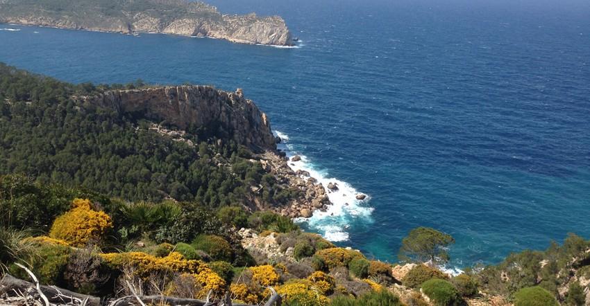 Mallorca - Best of routes (ab Playa de Palma)