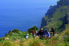 Mallorca-West (ab Paguera) (Gruppenprogramm)