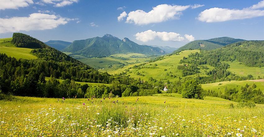 Niedere Tatra (Gruppenprogramm)