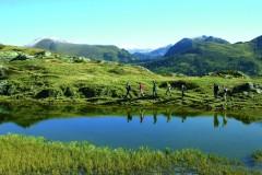 Nationalpark Nockberge (Gruppenprogramm)